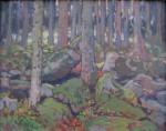 Bubeníček Ota - Pohled do lesa s balvany